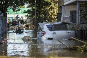 Nhật Bản lập nhóm đặc trách xử lý hậu quả của siêu bão Hagibis