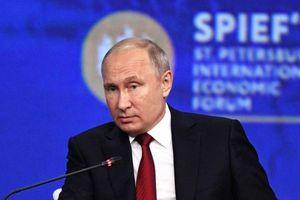 Ông Putin kêu gọi giải phóng Syria khỏi quân đội nước ngoài bất hợp pháp