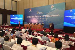 Phó Thủ tướng Vương Đình Huệ: Kinh tế tập thể chưa phát triển tương xứng tiềm năng
