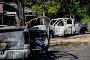 14 cảnh sát Mexico bị phục kích thiệt mạng, nghi do băng đảng ma túy