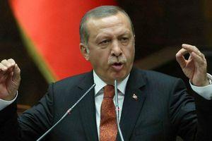 Quốc tế lên án, dân Thổ Nhĩ Kỳ lại coi tổng thống là anh hùng