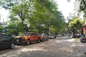 Cần xử lý nghiêm vi phạm trật tự đô thị trên phố Nguyễn Đình Hoàn