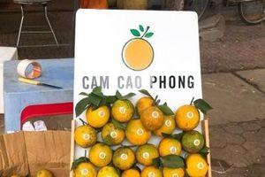 Cam Cao Phong đầu mùa giá 30.000 đồng/kg