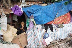 Xót xa cụ bà cùng con trai ngớ ngẩn sống trong túp lều dưới gầm cầu Long Biên