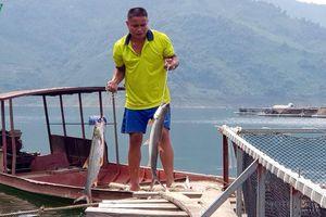 Nhân rộng mô hình nuôi cá lồng trên lòng hồ thủy điện Sơn La