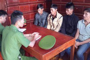 Tạm giữ 5 nghi can đầu độc rừng thông ở Đắk Nông