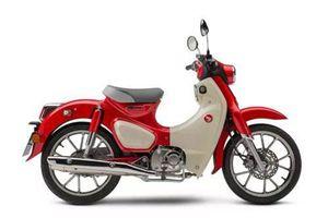 Tận mục Honda Super Cub C125 ABS 2020, giá ngang SH150i