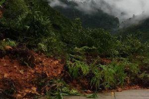 Bão số 5: Nhiều tuyến đường ở Quảng Nam sạt lở, cây xanh đổ chắn đường