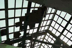 Bão số 5 gây thiệt hại hơn 367 tỷ đồng cho tỉnh Quảng Ngãi