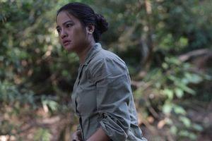 Chiếu miễn phí phim tham dự LHP Việt Nam