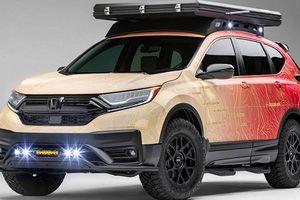 Dàn xe ôtô độ của Honda sắp mang đến SEMA 2019 có gì?