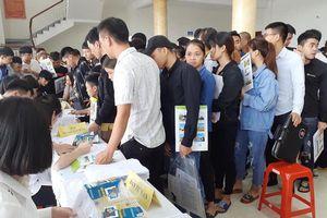 Ninh Bình: Thực hiện Chính sách bảo hiểm thất nghiệp đúng, đủ, kịp thời