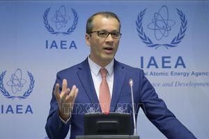 IAEA chỉ trích lệnh cấm của Iran nhằm vào một thanh sát viên quốc tế