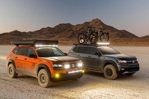 Volkswagen đến Sema 2019 với bốn mẫu concept đẹp mắt