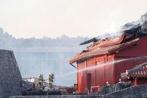 Cháy lâu đài Shuri biểu tượng của Okinawa