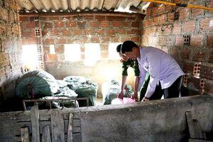 Quảng Ninh thu giữ gần 1 tấn pháo nổ