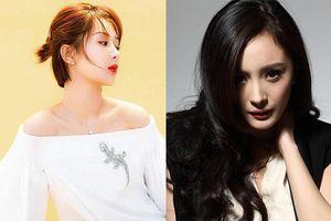Những nữ minh tinh có nhân khí - fan đông nhất giới giải trí Hoa Ngữ là ai?