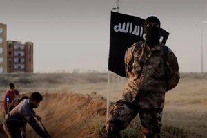 Tổng thống Trump: Mỹ biết thủ lĩnh mới của IS ở đâu