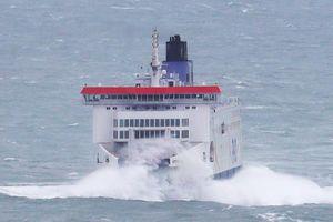 Người di cư liều mạng bơi qua biển từ Pháp sang Anh
