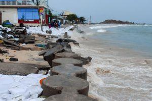 Chi 100 tỷ xây kè chắn sóng bảo vệ làng chài ở Bình Định