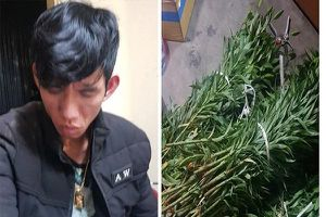 Lâm Đồng: 'Hoa tặc' gây ra hàng loạt vụ trộm ở Đà Lạt bị sa lưới