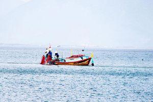 Hỗ trợ ngư dân bám biển