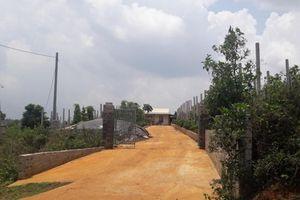 Cán bộ quản lý rừng phòng hộ 'ăn đất' lãnh án 7 năm tù