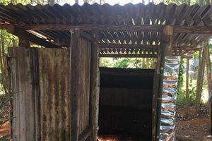 Đăk Tô (Kon Tum): Hội LHPN hỗ trợ 30 gia đình xây nhà tiêu hợp vệ sinh