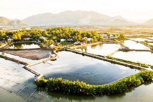 Mùa đông Nha Trang