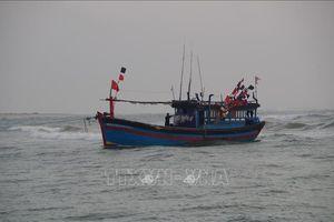 Liên tiếp ứng cứu nhiều sự cố trên biển