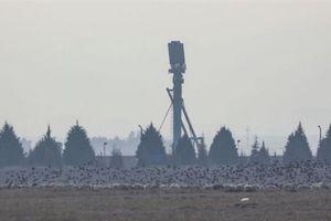 Ankara công bố kết quả thử nghiệm ấn tượng của S-400