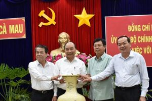 Thủ tướng Nguyễn Xuân Phúc đồng ý chủ trương làm nhà máy điện Cà Mau 3
