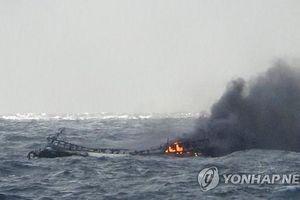 Tìm thấy một thi thể thuyền viên Việt Nam trong vụ hỏa hoạn trên tàu cá Daesung-ho