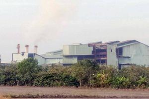 Vi phạm nghiêm trọng, một nhà máy đường ở Hậu Giang bị 'tuýt còi'