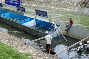 Thí điểm xử lý ô nhiễm sông Tô Lịch: Hiểu cho đúng