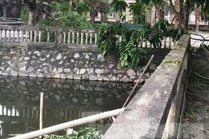 Ninh Bình: Nguyên Phó Giám đốc tử vong bất thường trong khuôn viên bệnh viện