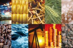 Thị trường hàng hóa tuần từ 9 – 13/12: Nông sản, công nghiệp nặng bùng nổ, công nghiệp nhẹ mất đà