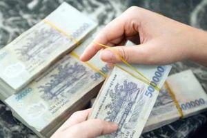 Tập đoàn Cotana bị phạt và truy thu thuế gần 700 triệu đồng