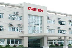 MB Capital bán gần 8 triệu cổ phiếu GEX, không còn là cổ đông lớn của Gelex