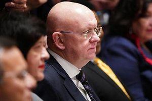 Nga, Trung 'nóng mặt' tại Liên hợp quốc về Syria