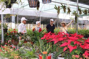 UBND Thành phố Sa Đéc chấn chỉnh việc thu phí làng hoa