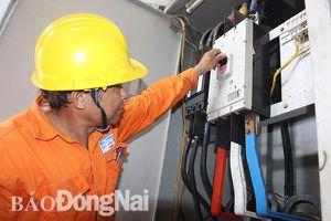 Điện lực Đồng Nai tri ân khách hàng dịp cuối năm