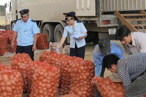 Bộ Công Thương: Nhiều giải pháp ổn định hoạt động xuất khẩu nông sản, trái cây