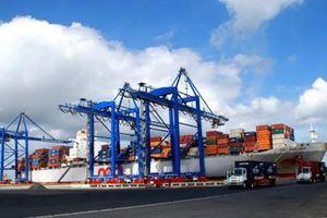 11 tháng đầu năm 2019, Cảng biển Nghệ An đón 9 triệu tấn hàng