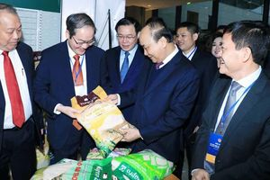 Hapro tập trung nguồn lực cho xuất khẩu và thương mại dịch vụ