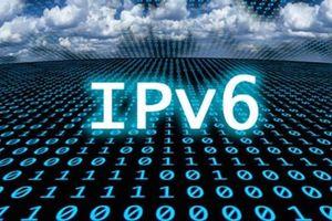 Việt Nam đứng thứ 8 toàn cầu về mức độ ứng dụng IPv6