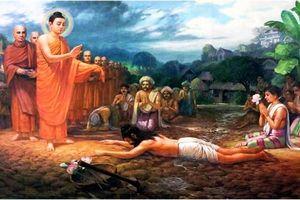 Sự hồi sinh của Phật giáo Ấn Độ