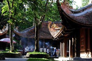 Thanh Hóa: Khu di tích Lam Kinh - Chuyện kể từ những văn bia cổ