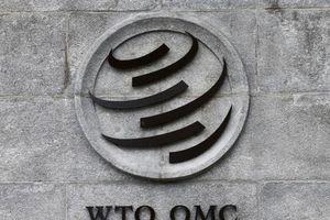 Tương lai đầy thách thức của WTO sau 25 năm hoạt động
