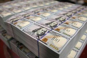 Dự trữ ngoại hối cuối năm 2019 đạt mức kỉ lục gần 80 tỷ USD